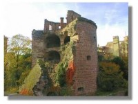 Visiting Heidelberg Castle