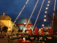 Visit the fantastic Europa-Park